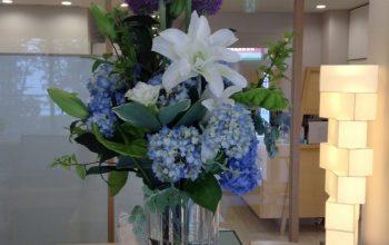 今月のお花☆彡